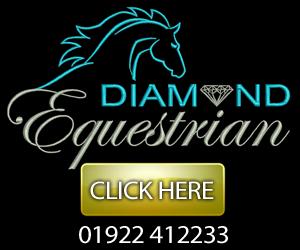 Diamond Equestrian